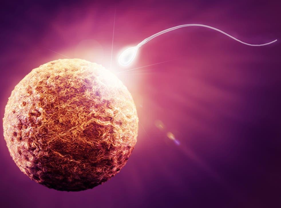 A 3D illustration of sperm reaching human egg
