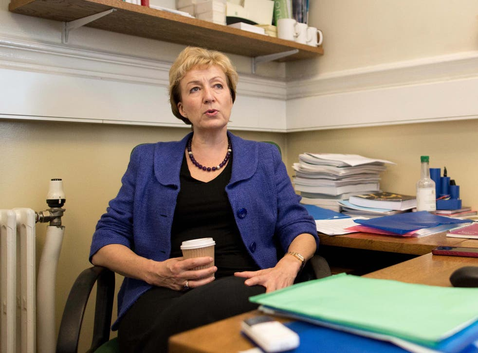 Conservative MP Andrea Leadsom used controversial trusts to reduce her potential tax bill