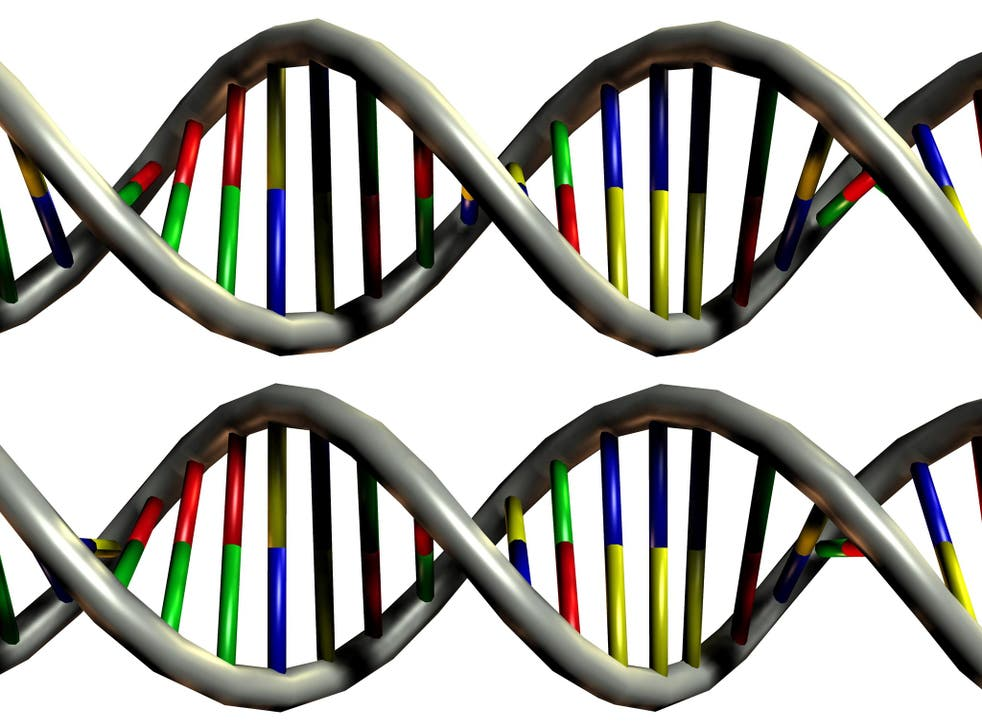A new technique for editing the human genome that promises to revolutionise the way many human diseases will be treated in the future has been discovered