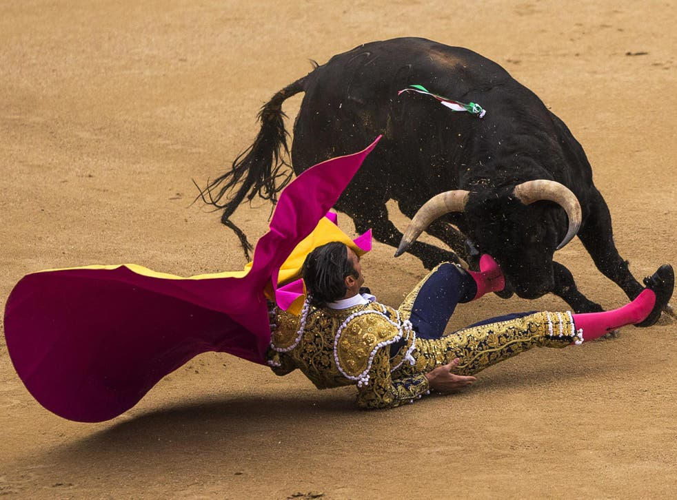 In just one corrida, or session, on Tuesday, three bullfighters were gored