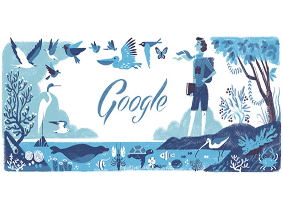 The Google doodle to commemorate the 107th anniversary of the birth of Rachel Louise Carson
