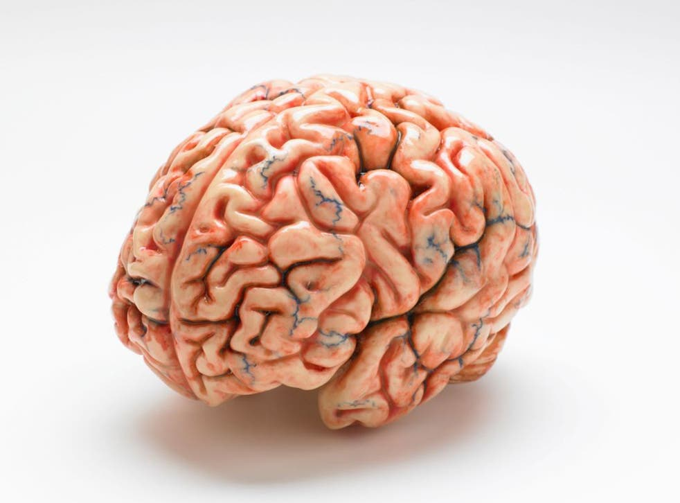 A new paper argues the public good outweighs all personal concerns over brain research