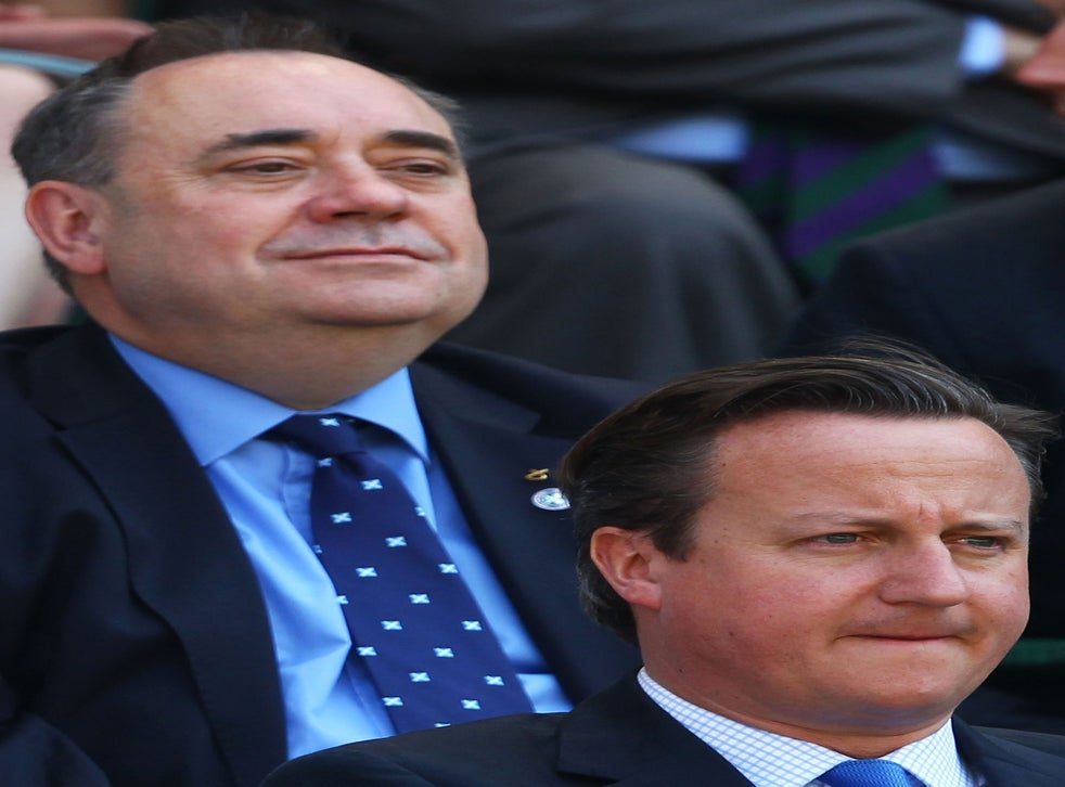 Scottish Independence Alex Salmond Says David Cameron Is Running Scared Over Referendum As Andy Murray Slams Saltire Stunt The Independent The Independent