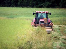 A Norfolk farmer has put 185 tractors up for sale | The Independent