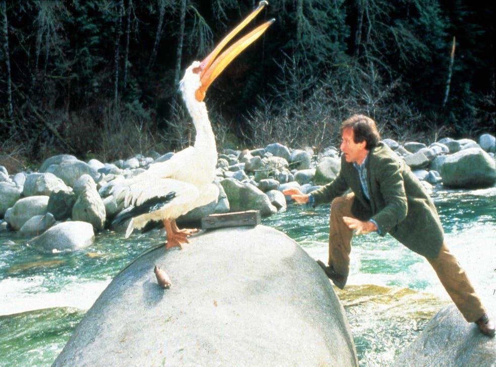 Pecking order: Robin Williams in Jumanji