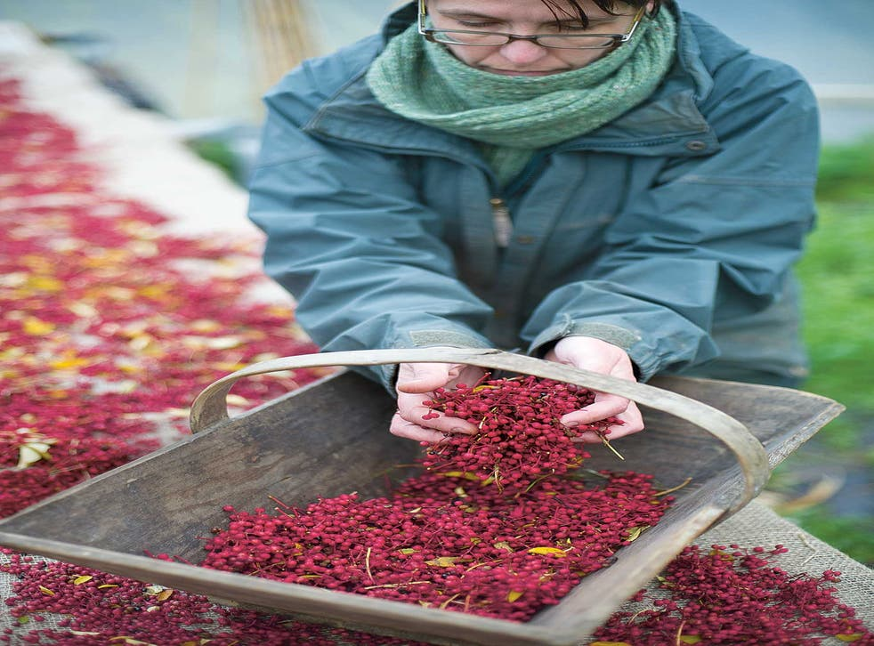 Diacono's exotic crops have ranged from apricots to grapes via Szechuan pepper