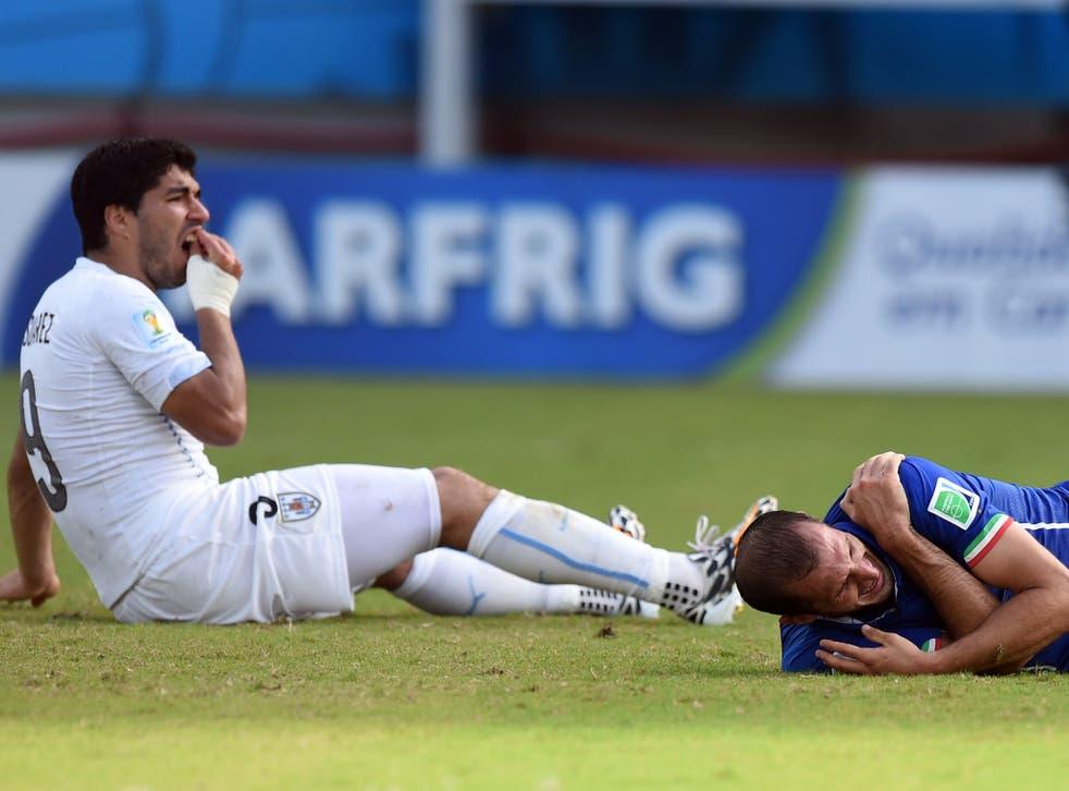 Luis Suarez holds his teeth while Giorgio Chiellini lies in pain