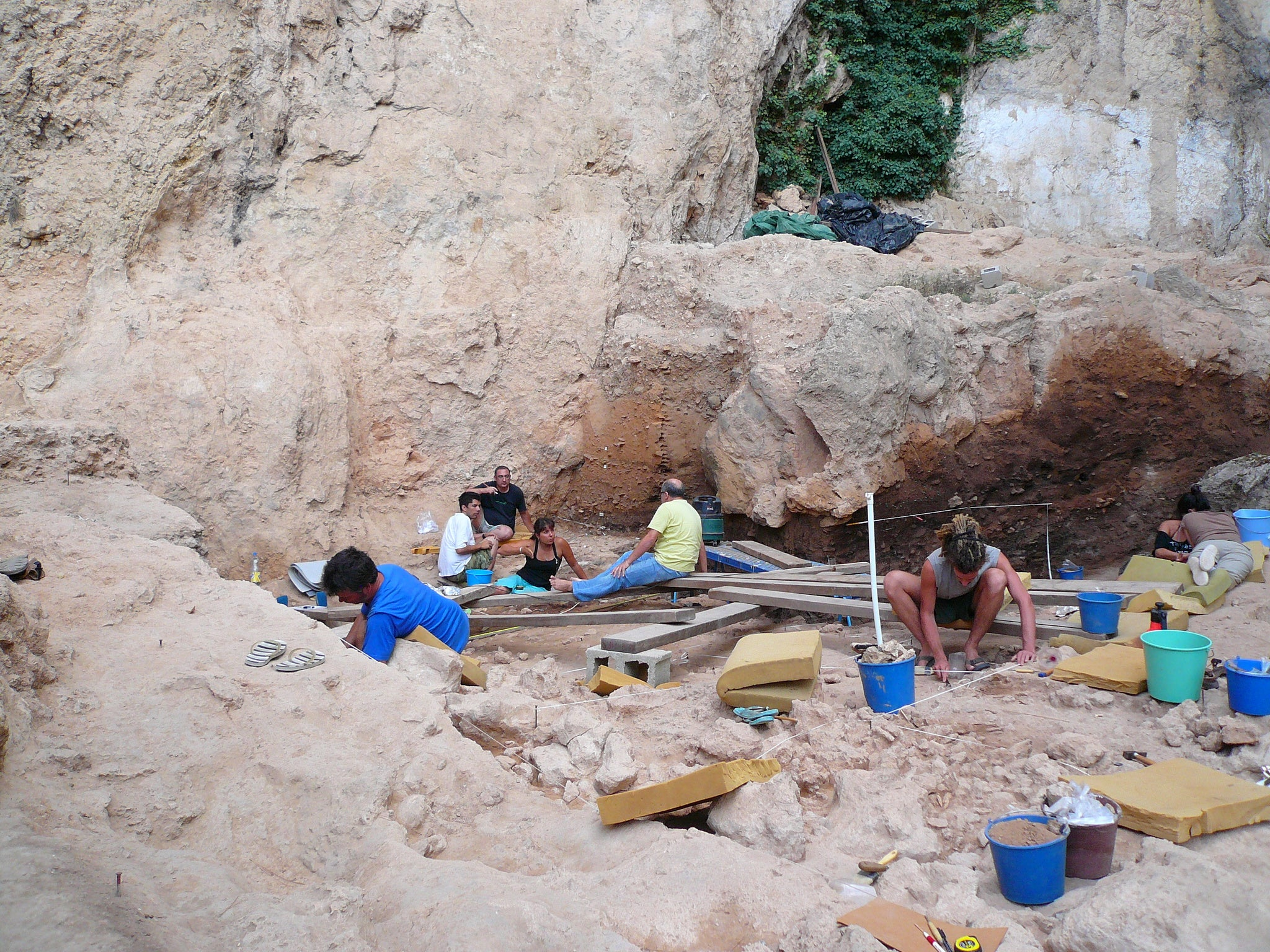 World's oldest faeces: Neanderthals ate more vegetables than previously thought, say scientists