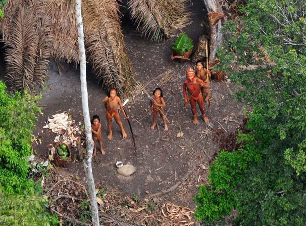 Members of an uncontacted tribe, seen from a Brazilian government observation aircraft in the Amazon rainforest