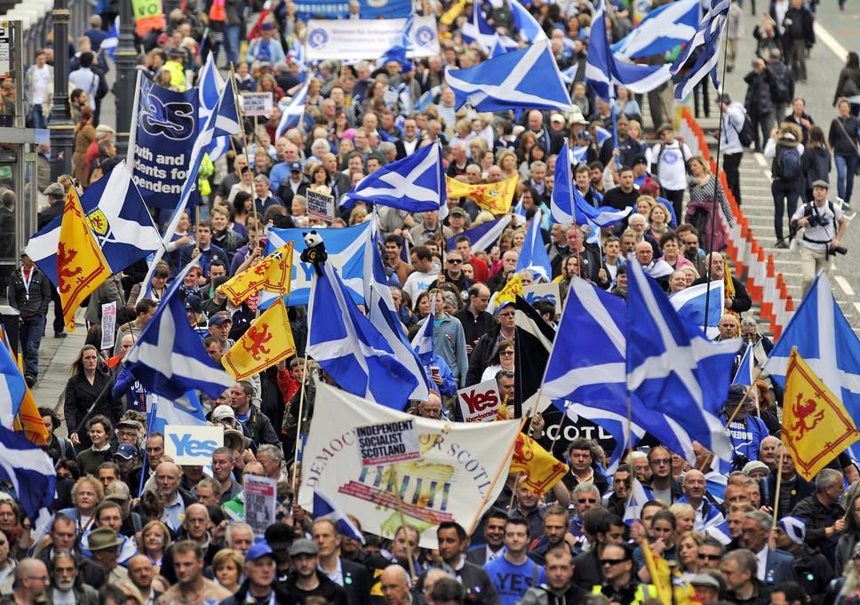 Image result for 2014 referendum