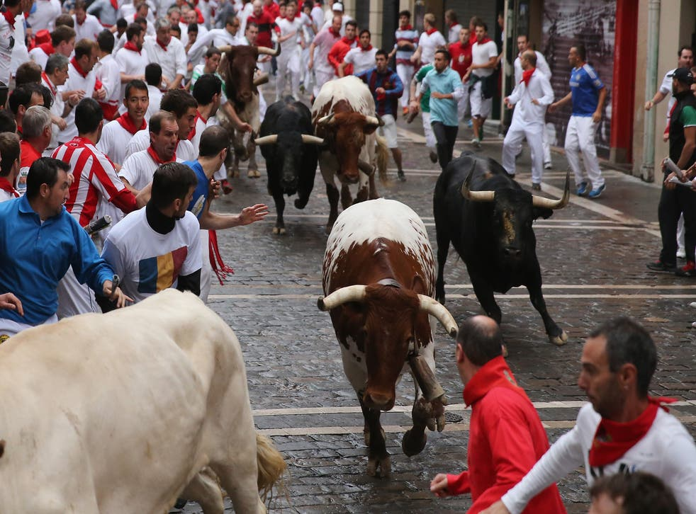 STA Travel has discontinued its tours to the Running of the Bulls