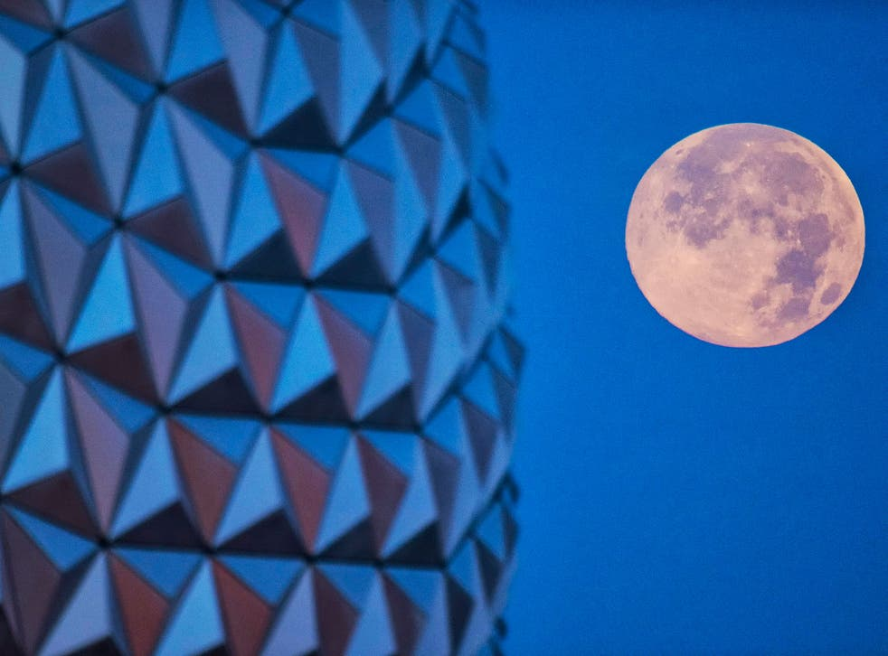 In this handout photo provided by Disney Parks, the 'supermoon' is seen with the Epcot center geodesic sphere in the foreground on June 23, 2013 at Walt Disney World Resort in Lake Buena Vista, Florida. This 'supermoon' is the closest and largest full moo