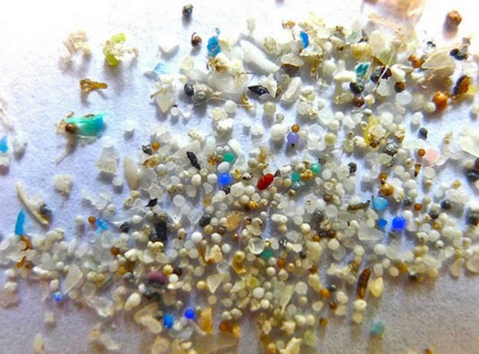 Plastic beads are often invisible to the naked eye and can enter the food chain via fish
