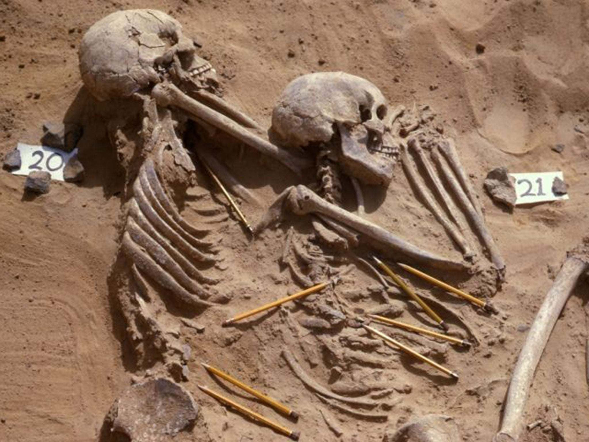Saharan remains may be evidence of first race war, 13,000 years ago