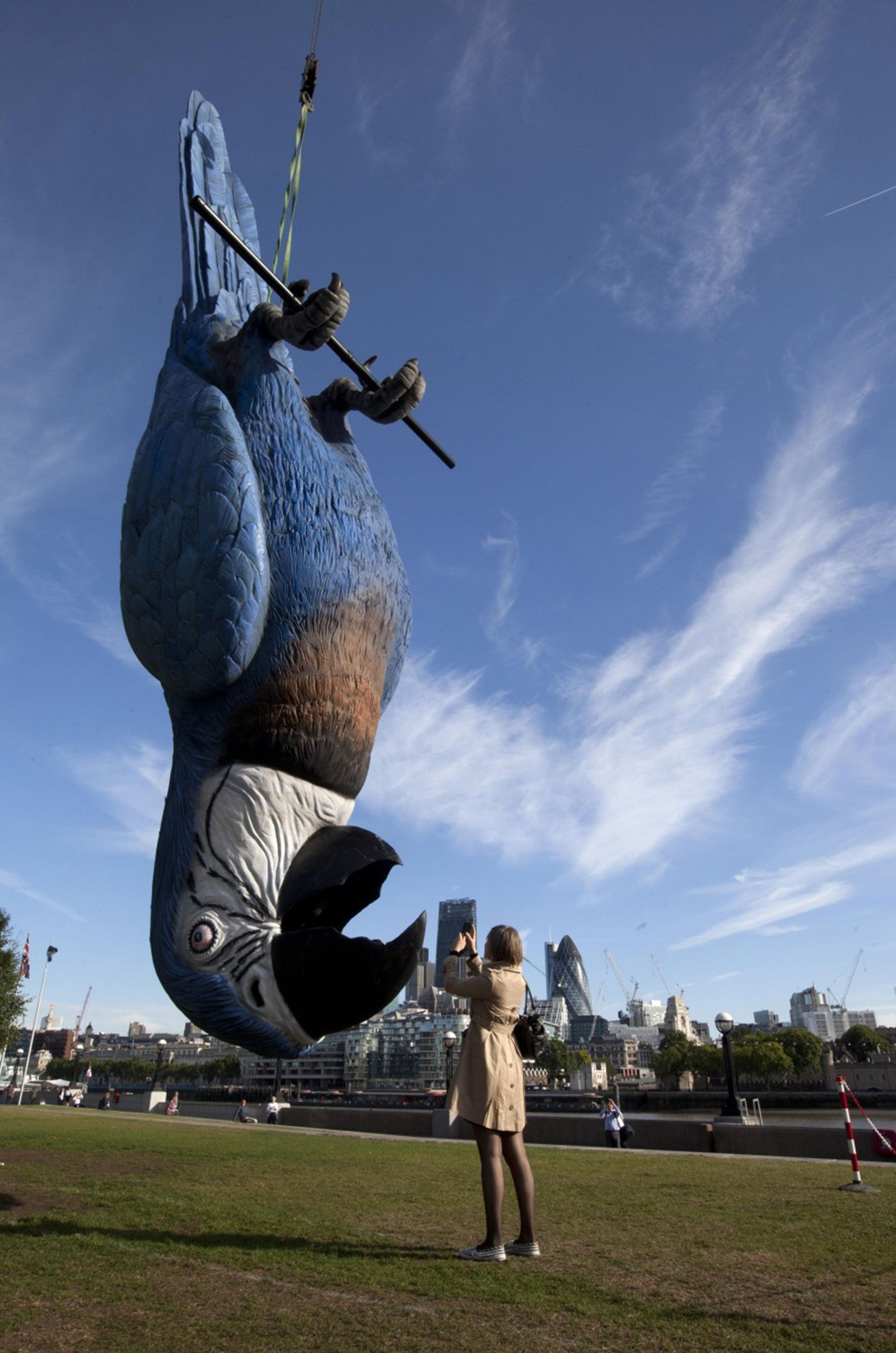Monty Python S Dead Parrot Suspended From Crane In London In Tribute To Comedy Quintet The Independent The Independent