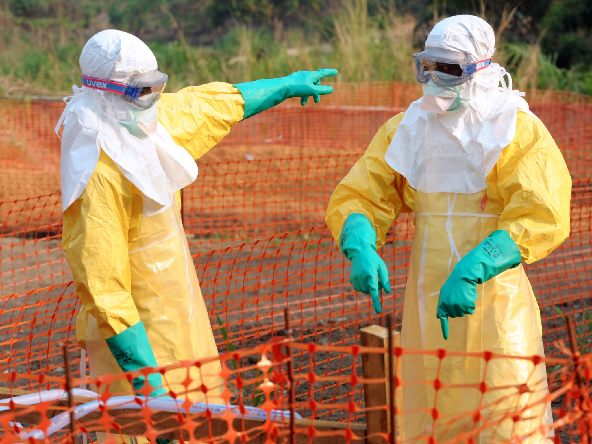 As Ebola, Mers and HIV/Aids make headlines, what are the biggest risks to the world's health? And what is being done about them?