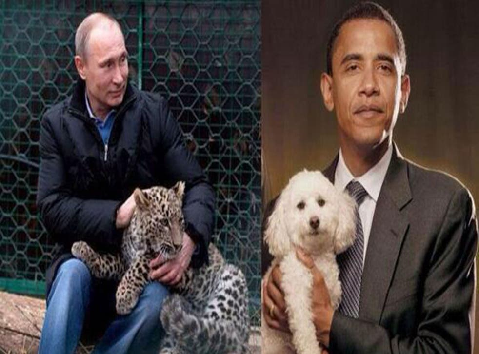 The Russian deputy prime minister tweeted a rather bizarre picture comparing the masculinity of Vladimir Putin, petting a leopard, and Barack Obama, holding a fluffy poodle