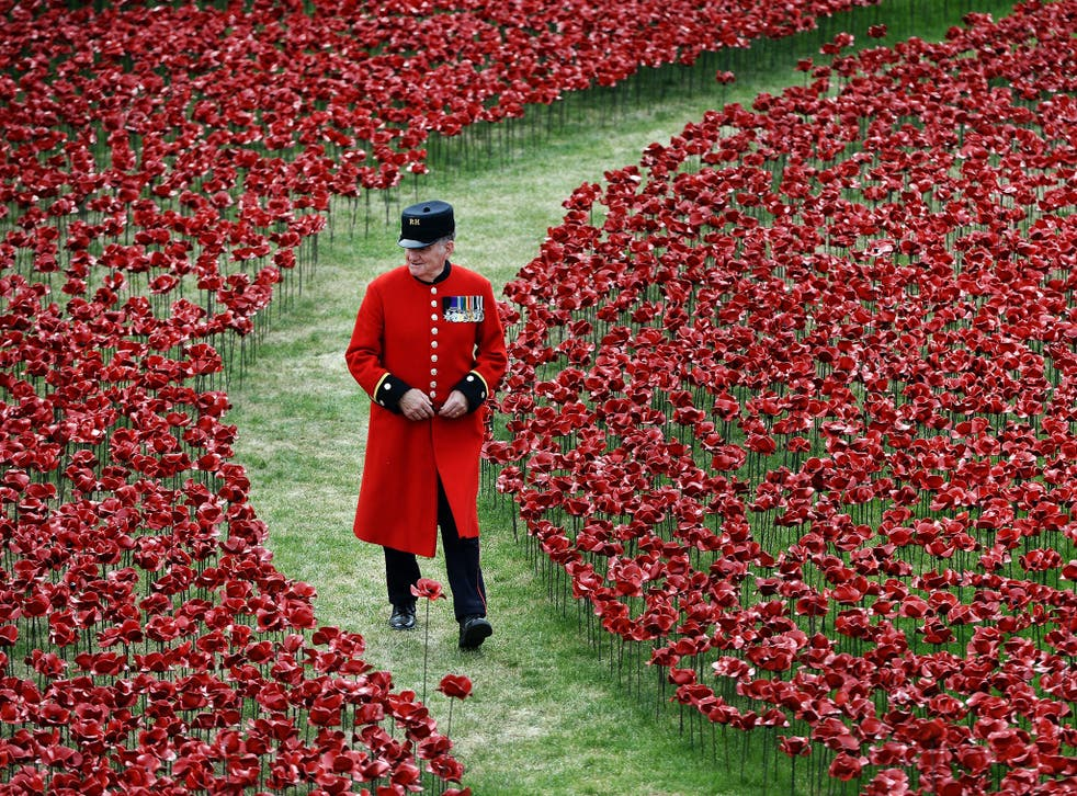 A Chelsea Pensioner walks among red poppies at the Tower of London's moat yesterday
