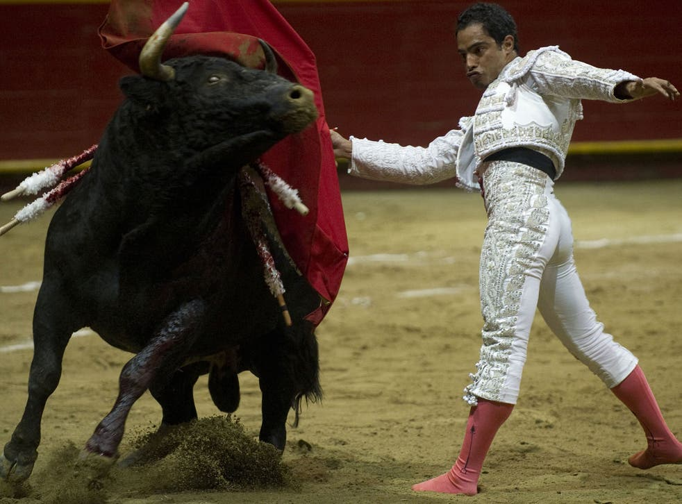 Colombian bullfighter Luis Bolivar performs during a bullfight at La Macarena