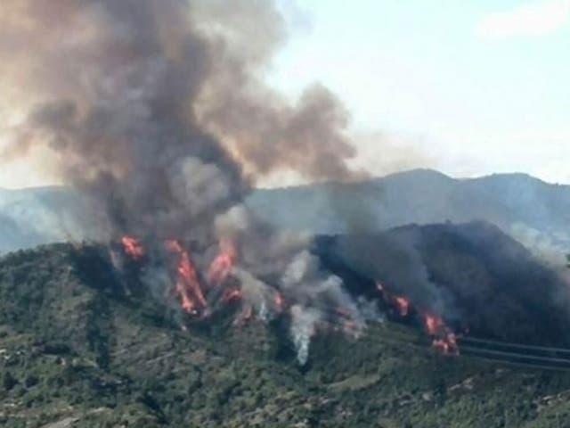 Una fotografía proporcionada por el Telejournal italiano Tg1 el 19 de agosto de 2014 muestra el incendio forestal