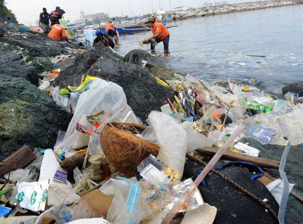 Plastic bags and other rubbish are collected from the waters of Manila Bay during a campaign by environmental activists earlier this year