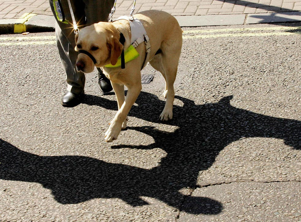 A charity has accused cyclists of making guide-dog owners cower in fear