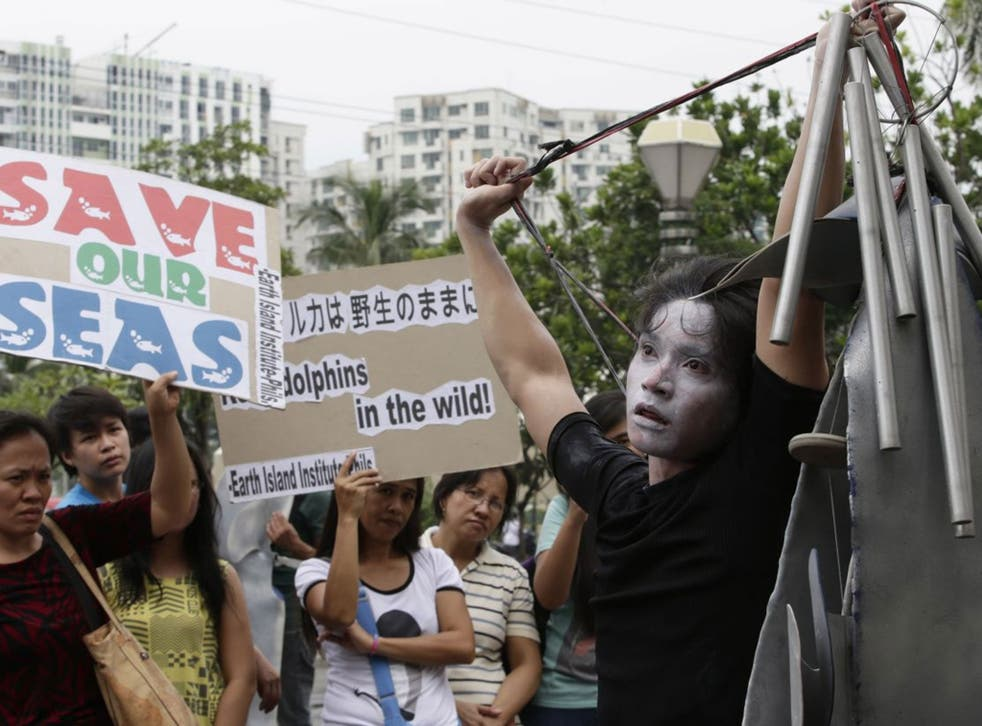 A Japanese stage actor performs during a protest against the alleged Japanese hunting of dolphins in Taiji, Japan