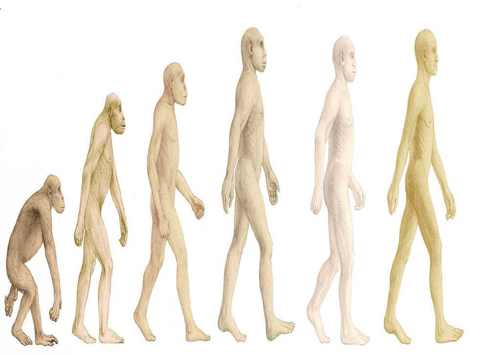 Stands to reason: three big revolutions in our evolution