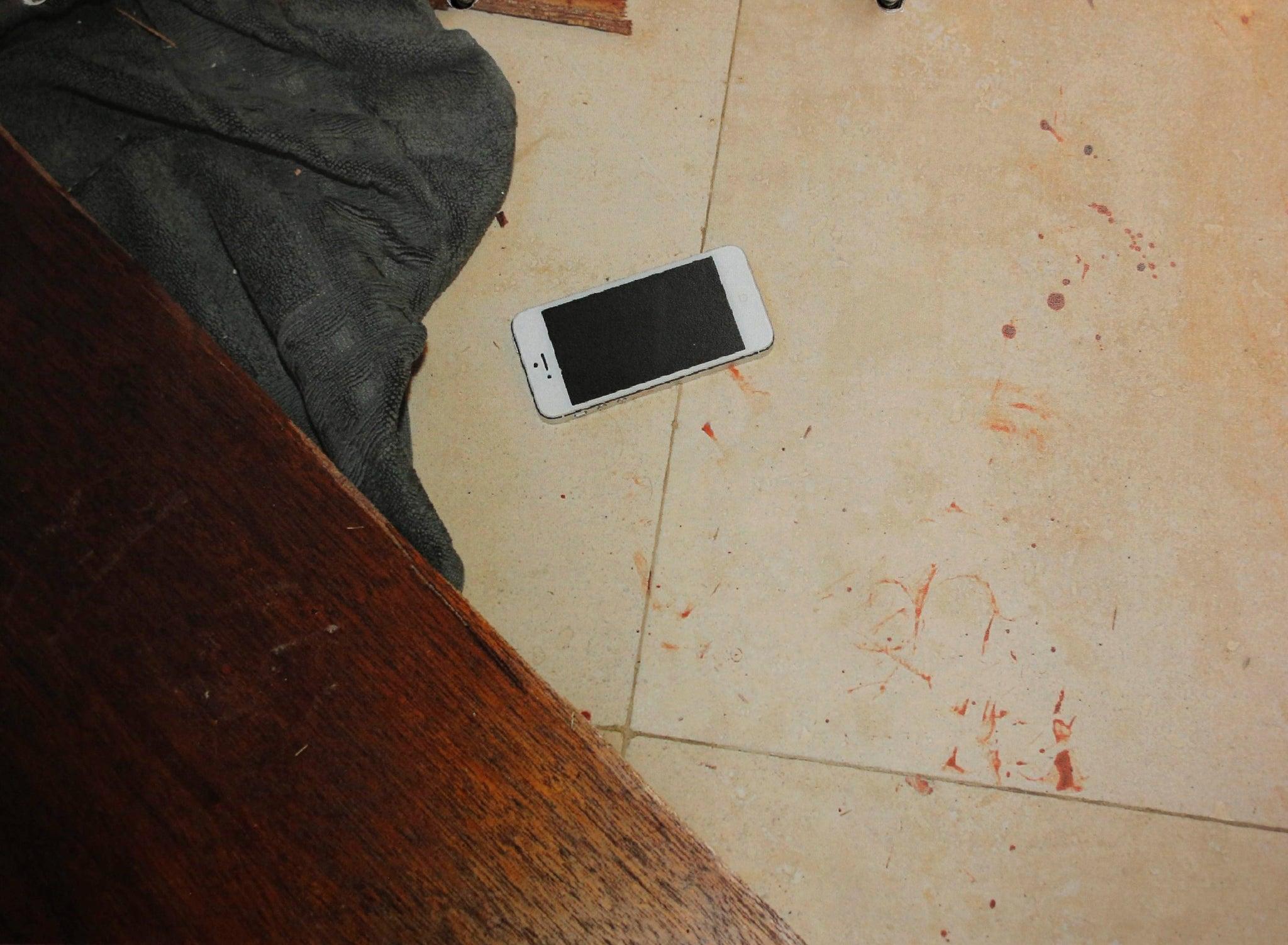 Reeva photos steenkamp scene crime