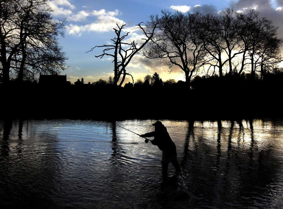 Fishing on the River Teith