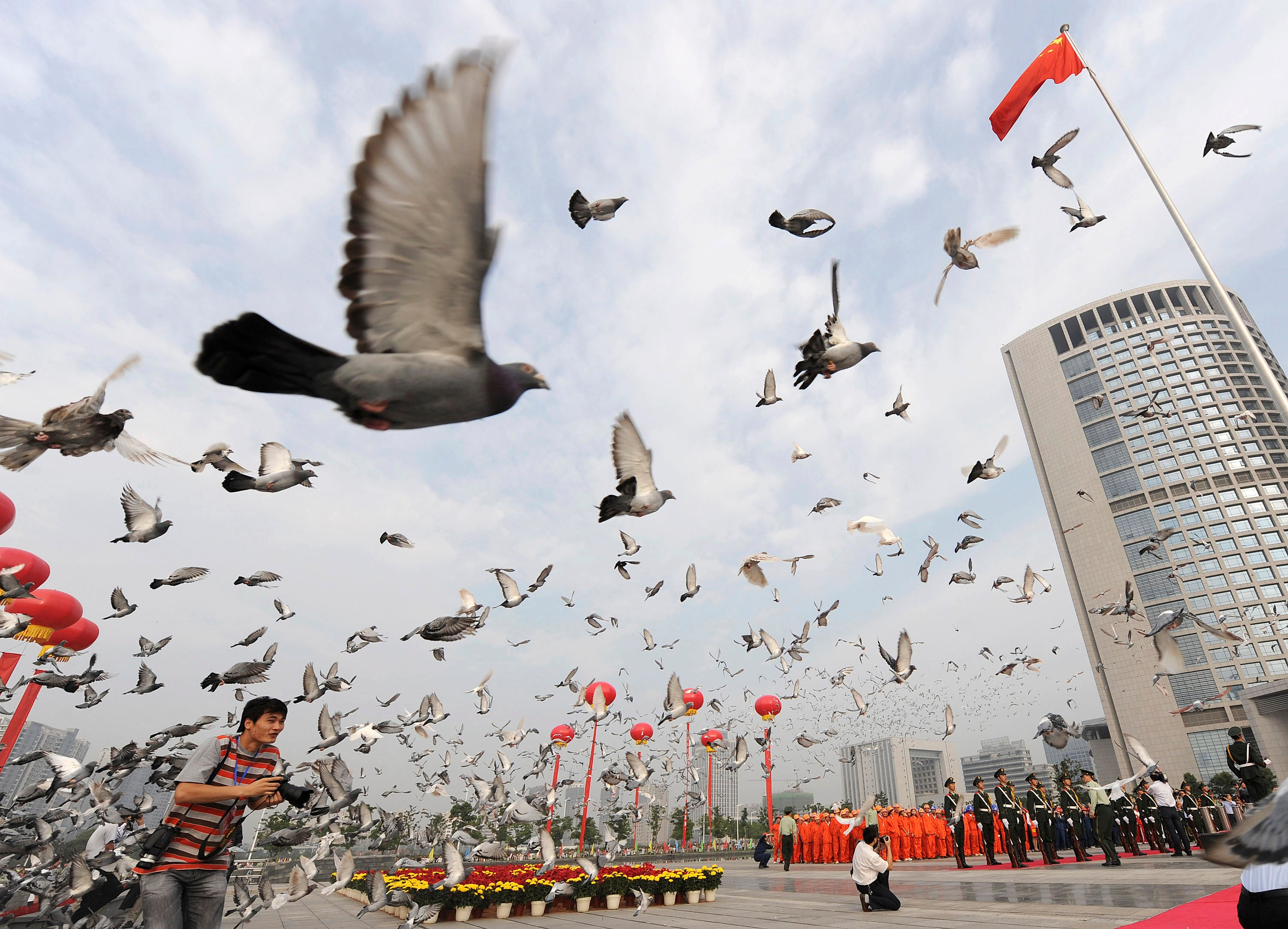 China performs cavity searches on 10,000 pigeons ahead of National ...