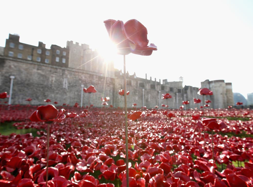 A general view at the 'Blood Swept Lands and Seas of Red' evolving art installation at the Tower of London