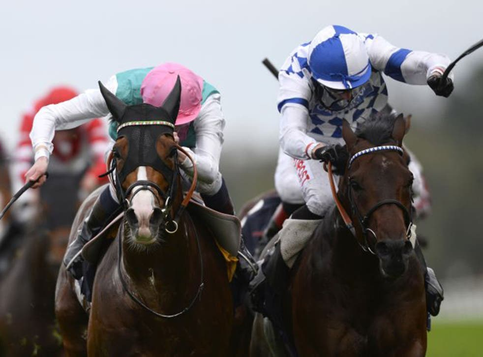James Doyle on Noble Mission, left, wins The Qipco Champion Stakes by a neck from Al Kazeem at Ascot on Saturday