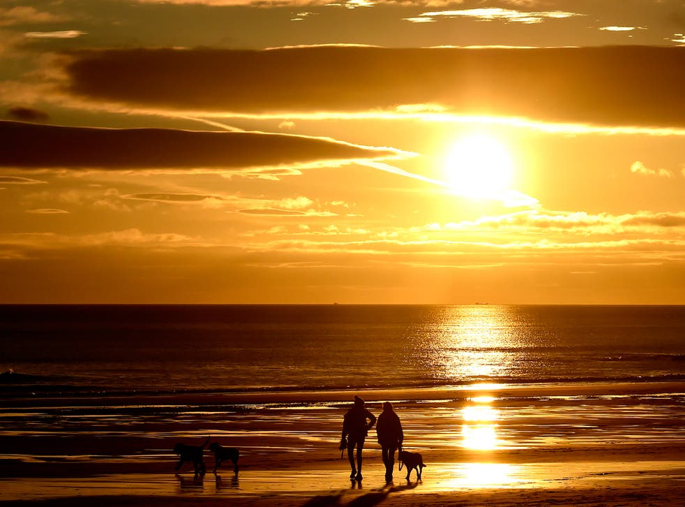 Dog walkers during sunrise on Longsands beach in Tynemouth