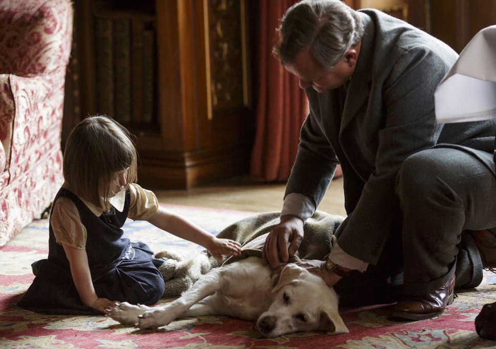 Downton Abbey dog Isis named after in-joke with real Grantham family