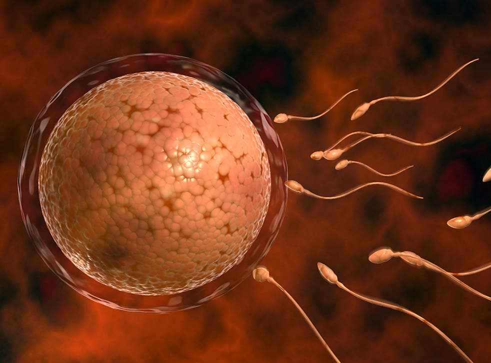 <p>Some 13 per cent said a romantic relationship had ended due to the coronavirus crisis, while two per cent reported it had made their partner 'on and off'</p>