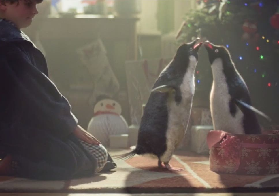 John Lewis Christmas advert 2014: Monty the lusty penguin seeks mate ...