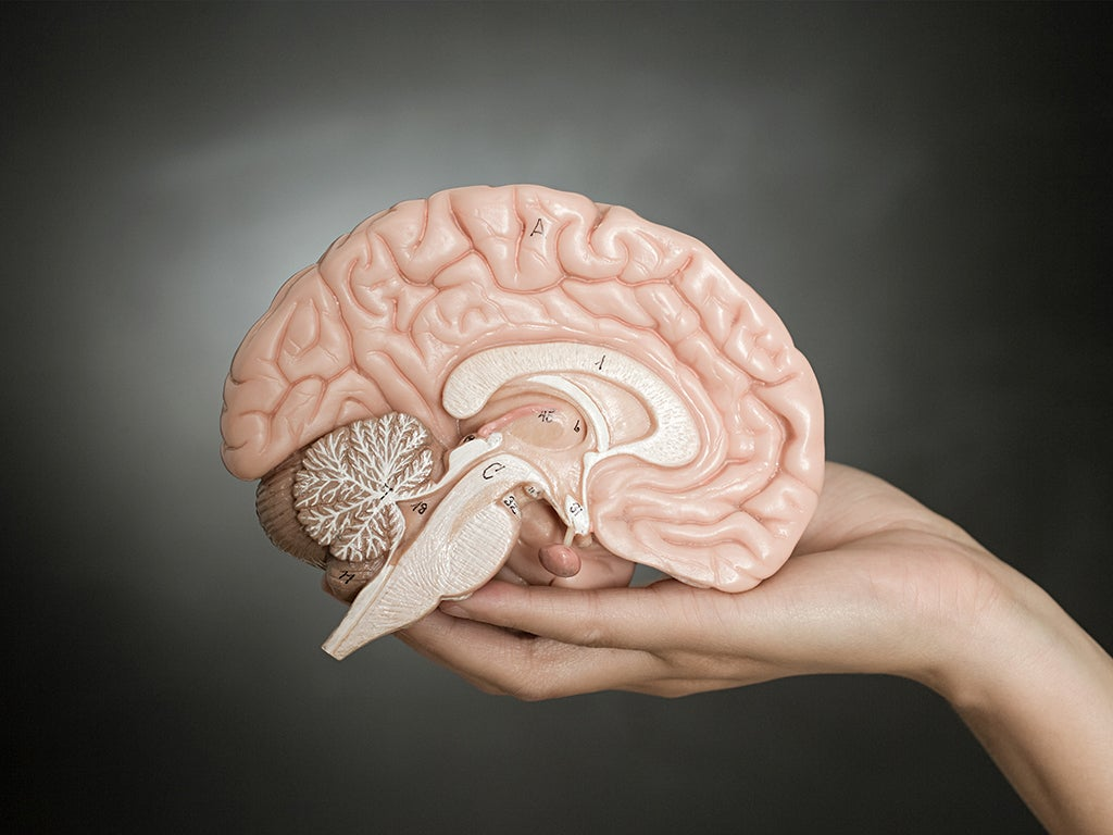 Forgetful? Distracted? Foggy? How to keep your brain young