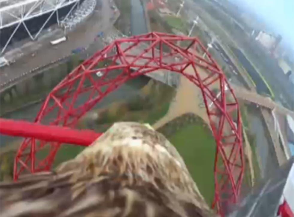 Darchan flies over East London