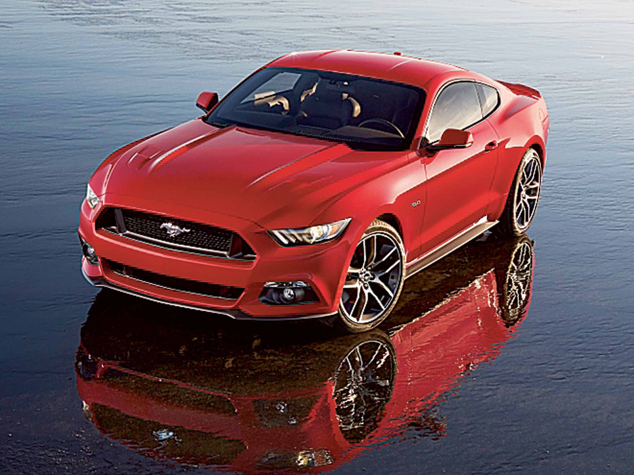 Ford mustang show of strength