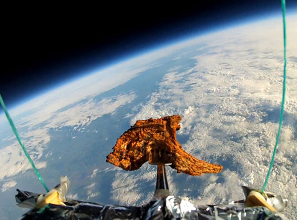 A lamb chop which was sent into space