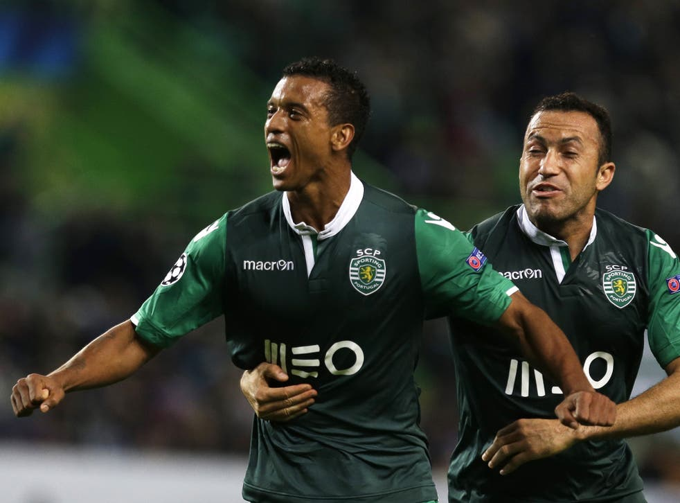 Nani celebrates after scoring for Sporting Lisbon in their Champions League tie against Maribor on Tuesday