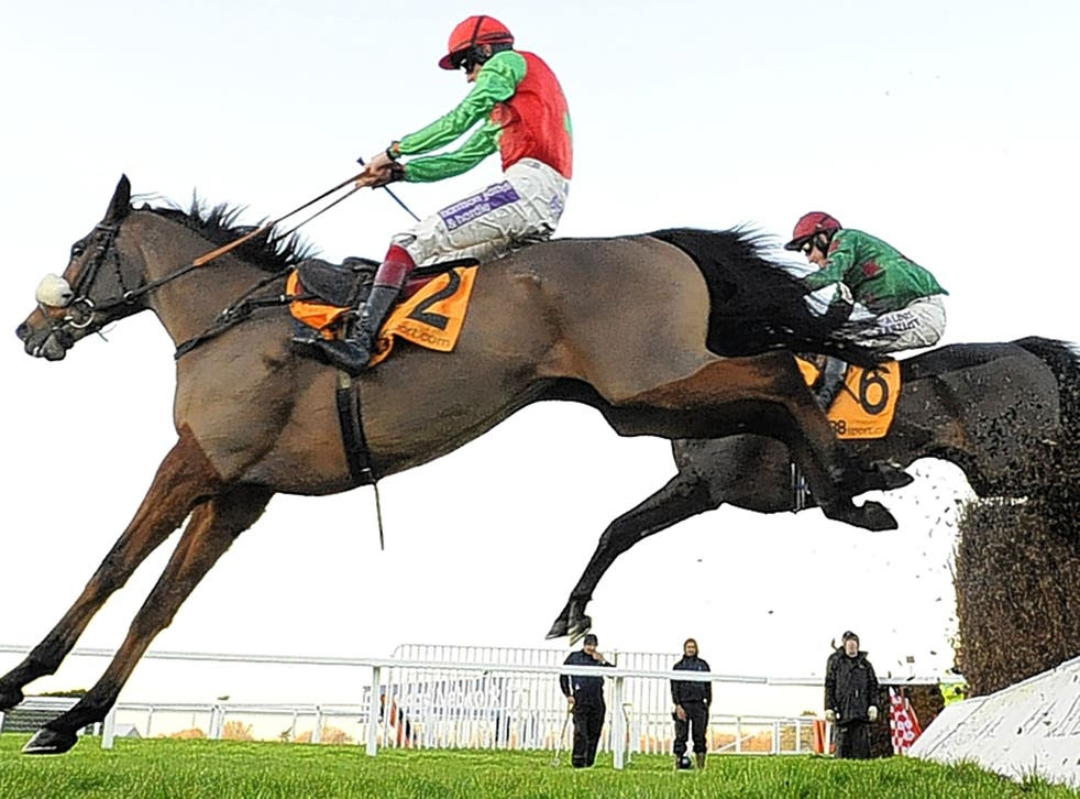 Clear winner: Dodging Bullets jumps the last ahead of Somersby on the way to victory at Sandown