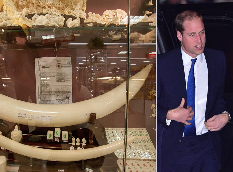 Prince William will attack China's ivory industry by saying it is fuelling the slaughter of elephants and other animals by poachers