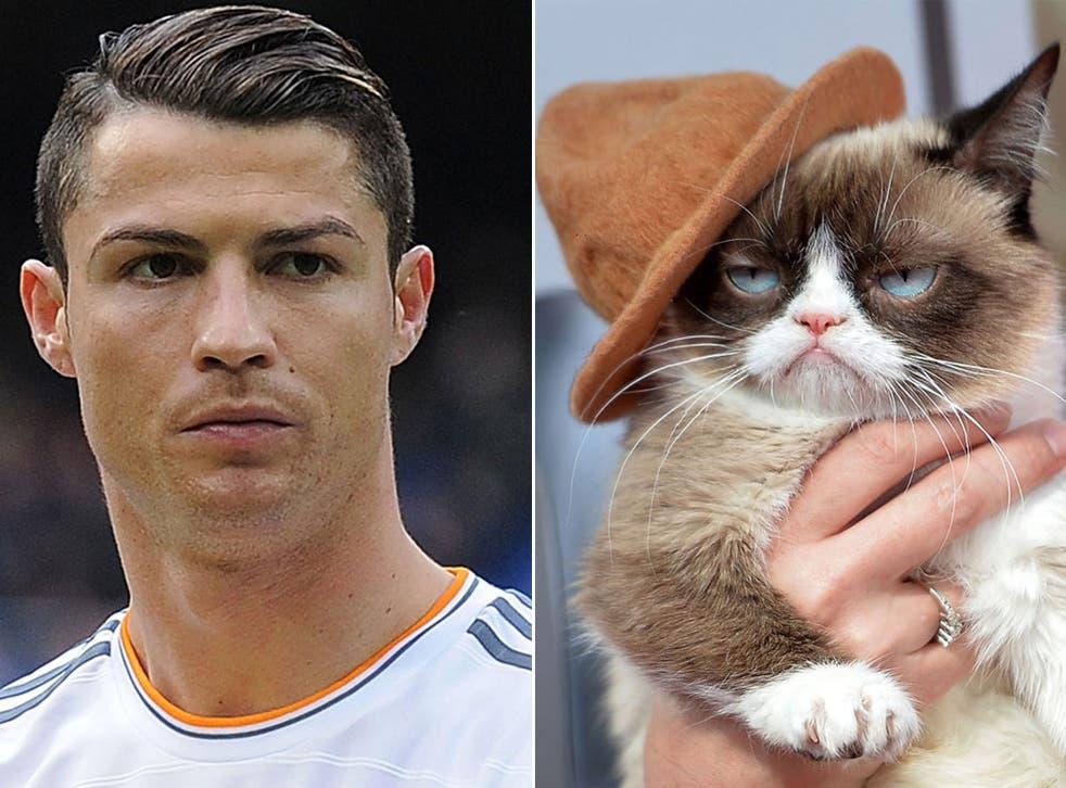 Cristiano Ronaldo; Grumpy cat