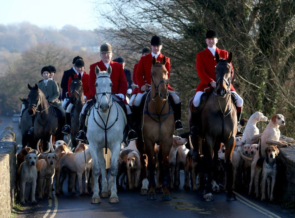 The legal Avon Vale Hunt in Wiltshire on Boxing Day last year