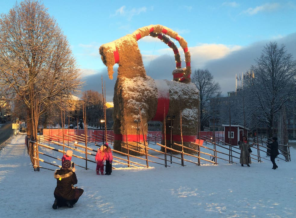 The Christmas goat in Gavle, Sweden, made it until Christmas without being burnt down for the first time in years.