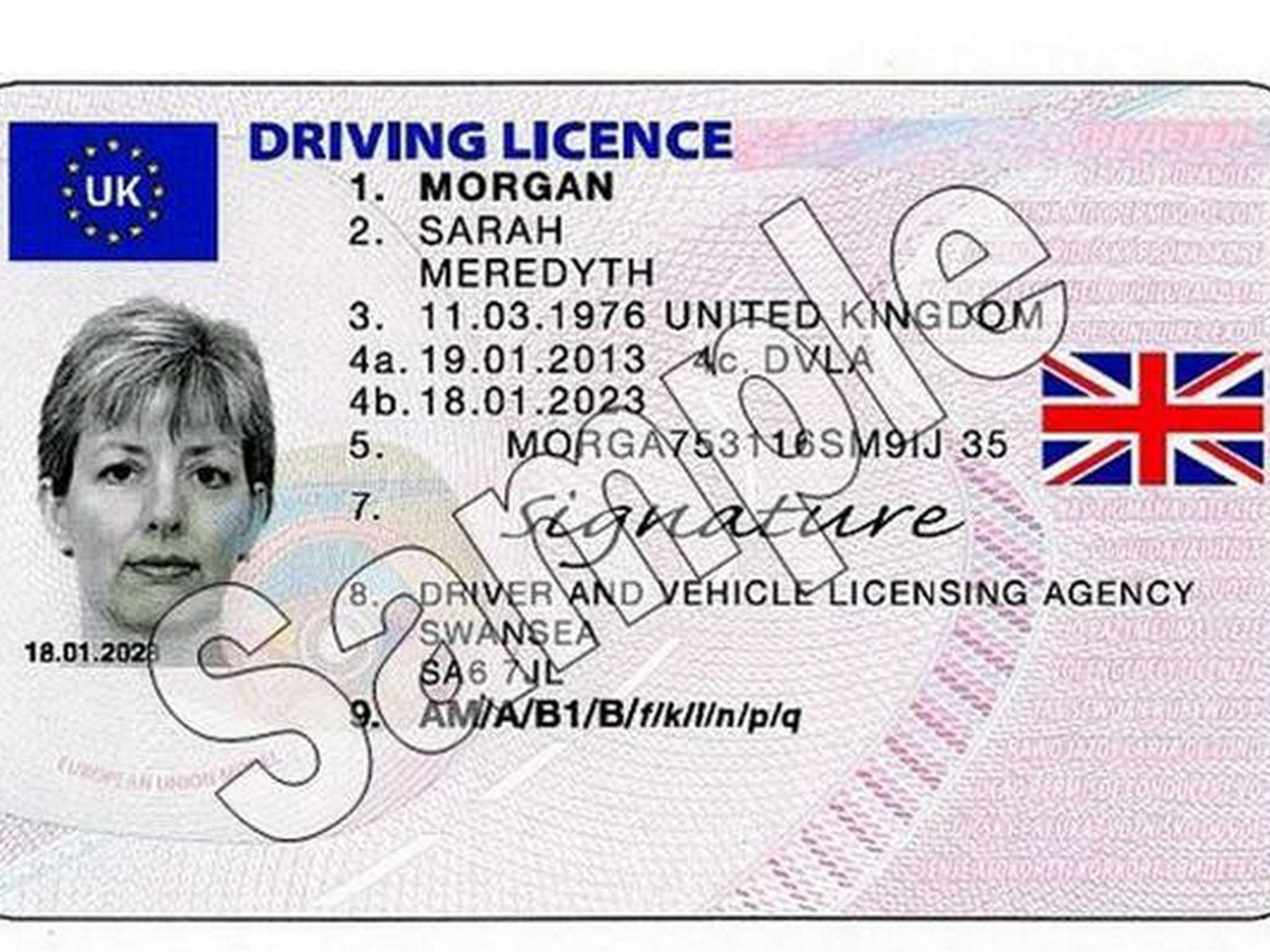 Paperless driving licence  DVLA changes explained as Brit     I amsterdam New MyLicence scheme revealed