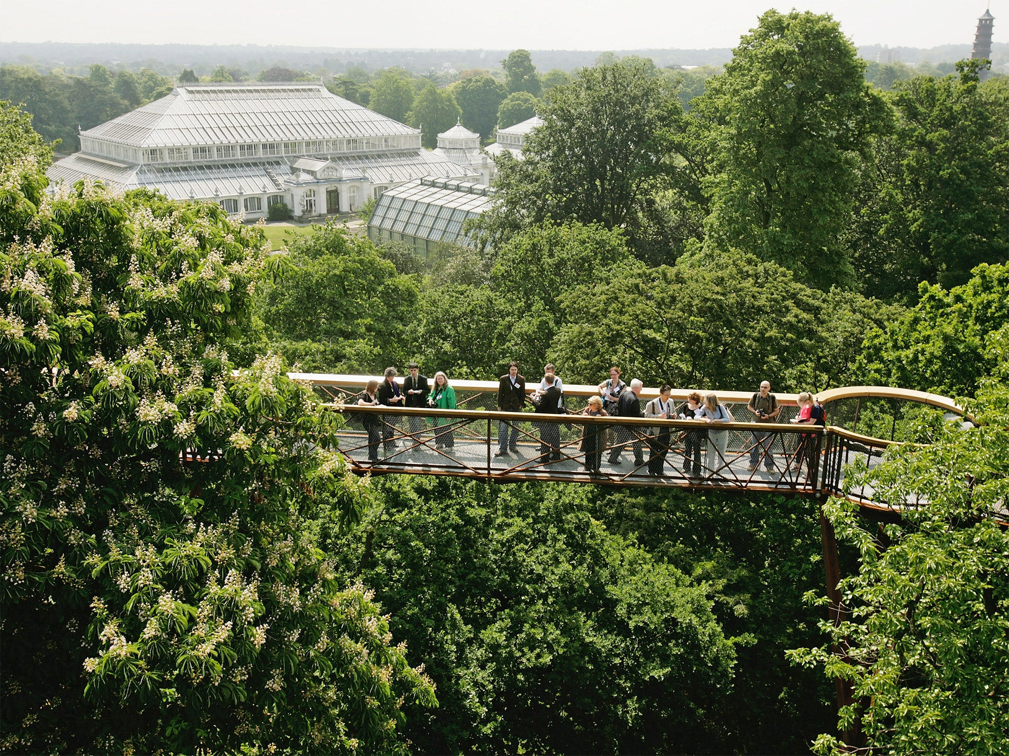 kew gardens dating Glasshouses at kew gardens— some dating from the mid 1800's—are world renowned the palm house, temperate house, princes of whales conservatory, alpine house, evolution house and waterlily house are each uniquely designed and ideally suited to their task.