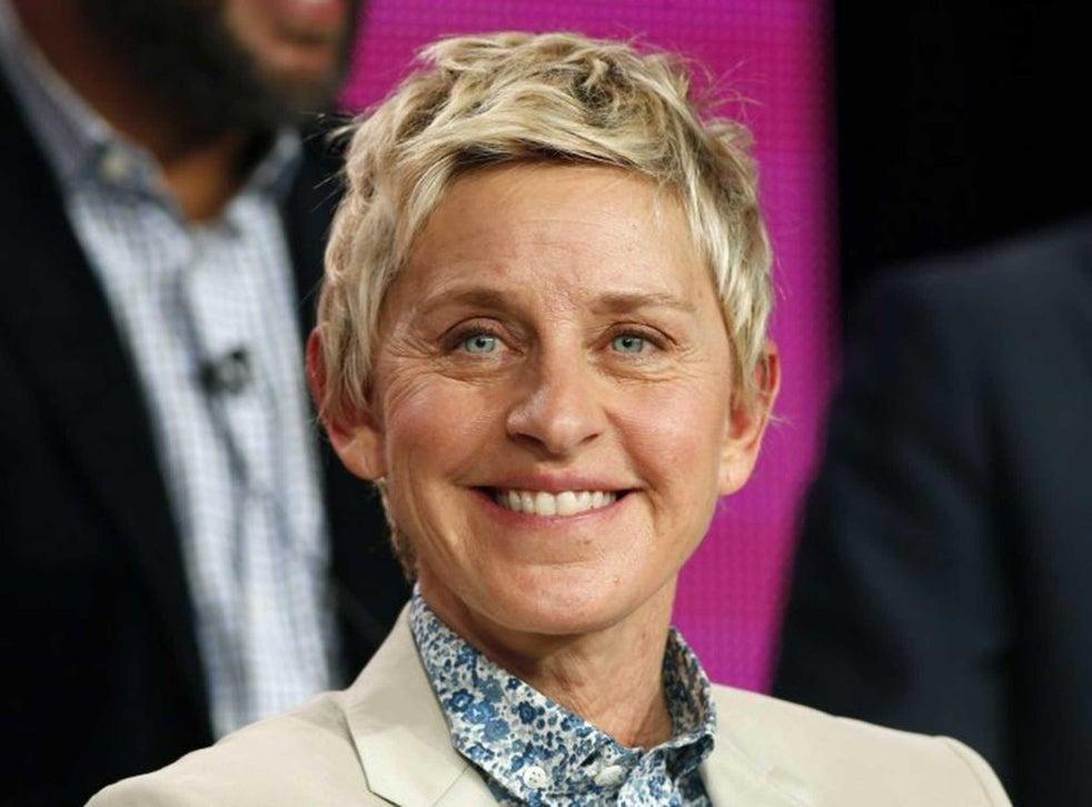 La estrella de televisión dijo que no quería que el programa fuera encasillado como una 'comedia lésbica' solo porque tiene un personaje lésbico.